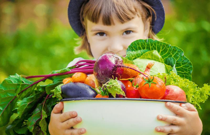Dieta Vegetariana – Para Que Serve e Alimentos Permitidos →【VEJA!】